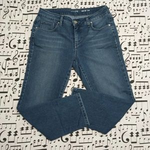 0cebd9f16355 Maison Jules Crop Skinny Jeans